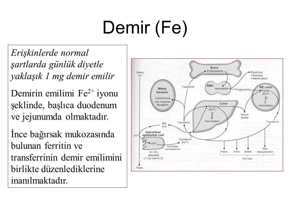 Demir (Fe) Erişkinlerde normal şartlarda günlük diyetle yaklaşık 1 mg demir emilir Demirin emilimi Fe 2+ iyonu şeklinde, başlıca duodenum ve jejunumda