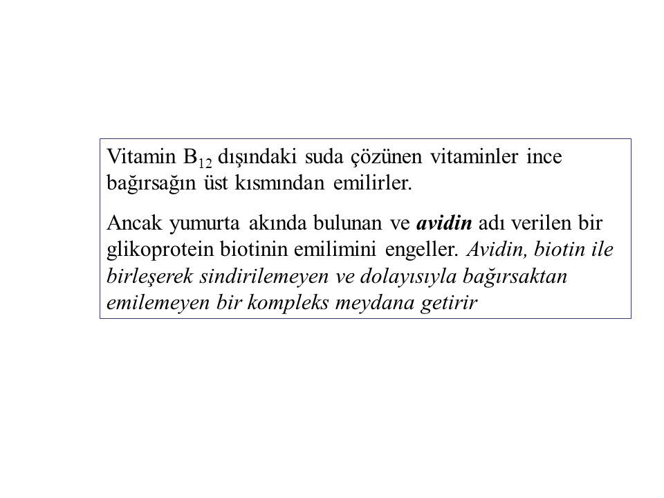 Vitamin B 12 dışındaki suda çözünen vitaminler ince bağırsağın üst kısmından emilirler. Ancak yumurta akında bulunan ve avidin adı verilen bir glikopr