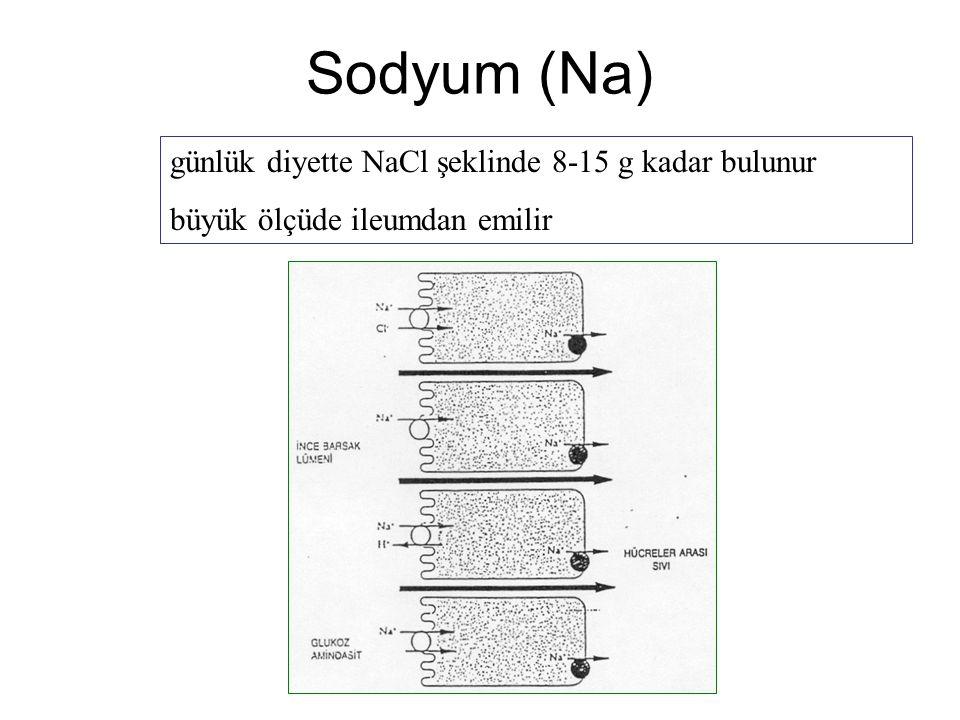 Sodyum (Na) günlük diyette NaCl şeklinde 8-15 g kadar bulunur büyük ölçüde ileumdan emilir