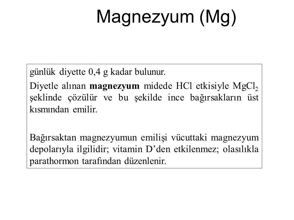 Magnezyum (Mg) günlük diyette 0,4 g kadar bulunur. Diyetle alınan magnezyum midede HCl etkisiyle MgCl 2 şeklinde çözülür ve bu şekilde ince bağırsakla