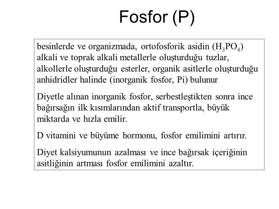 Fosfor (P) besinlerde ve organizmada, ortofosforik asidin (H 3 PO 4 ) alkali ve toprak alkali metallerle oluşturduğu tuzlar, alkollerle oluşturduğu es