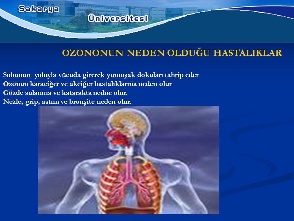 OZONONUN NEDEN OLDUĞU HASTALIKLAR Solunum yoluyla vücuda girerek yumuşak dokuları tahrip eder Ozonun karaciğer ve akciğer hastalıklarına neden olur Gözde sulanma ve katarakta nedne olur.