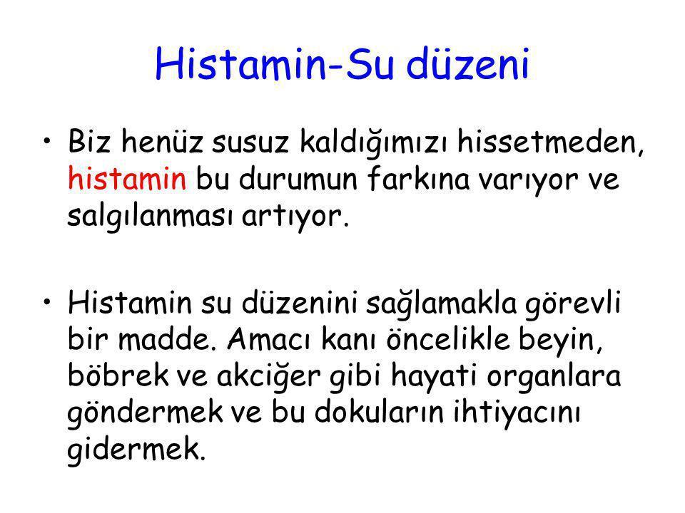 Histamin-Su düzeni •Biz henüz susuz kaldığımızı hissetmeden, histamin bu durumun farkına varıyor ve salgılanması artıyor. •Histamin su düzenini sağlam