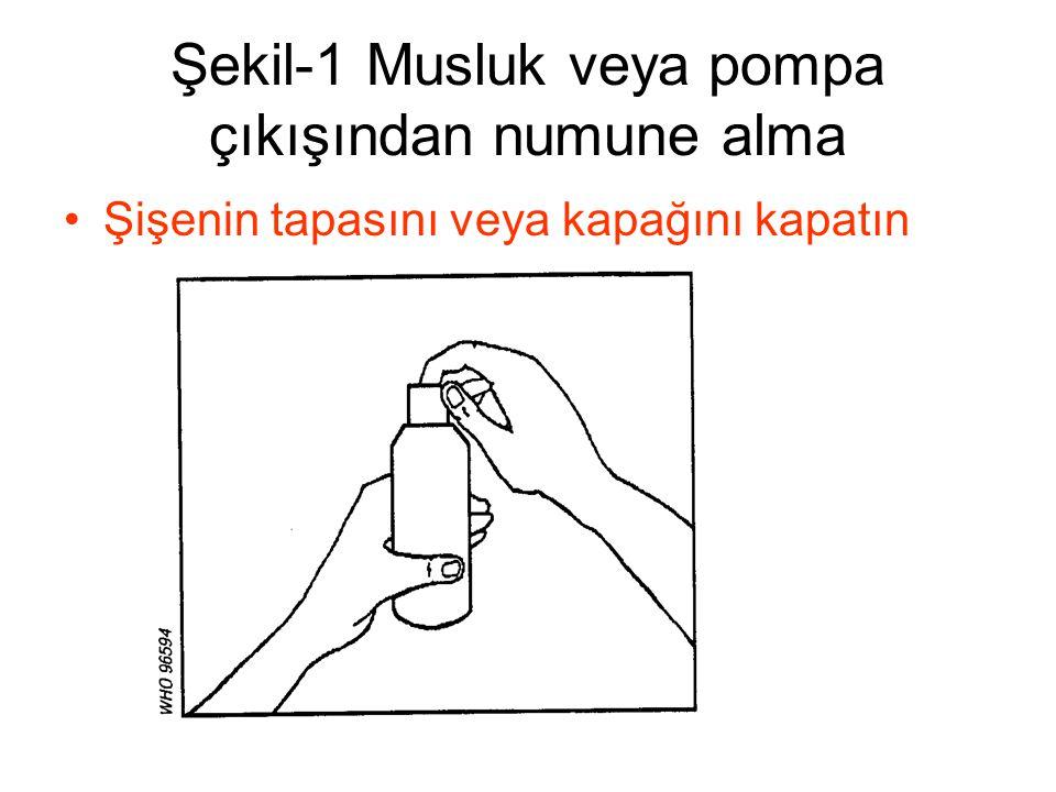 Şekil-1 Musluk veya pompa çıkışından numune alma •Şişenin tapasını veya kapağını kapatın