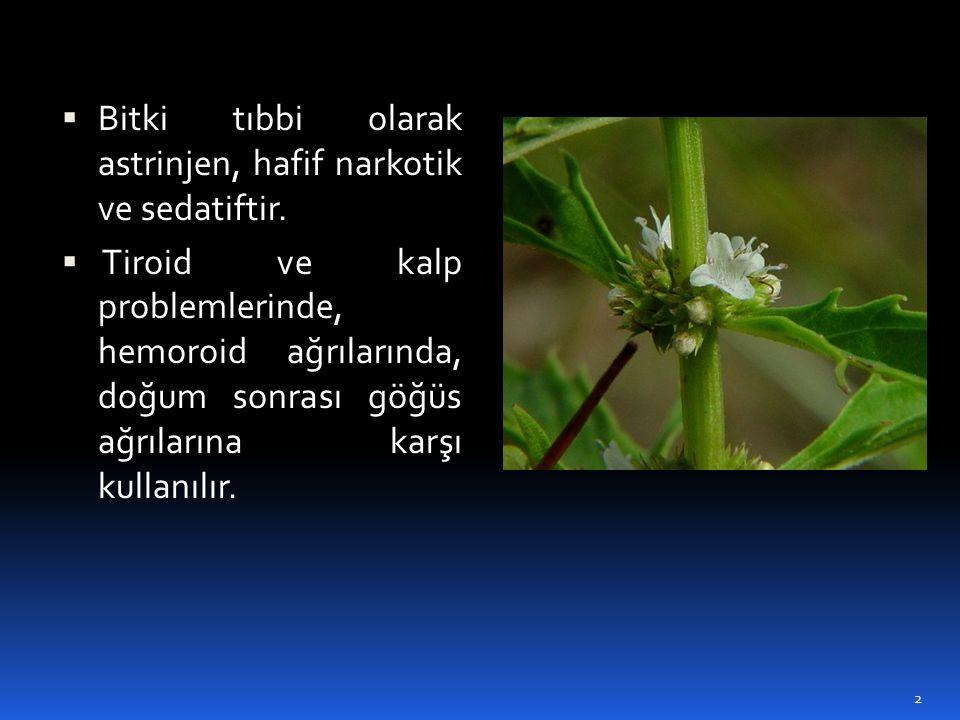  Bitki tıbbi olarak astrinjen, hafif narkotik ve sedatiftir.  Tiroid ve kalp problemlerinde, hemoroid ağrılarında, doğum sonrası göğüs ağrılarına ka