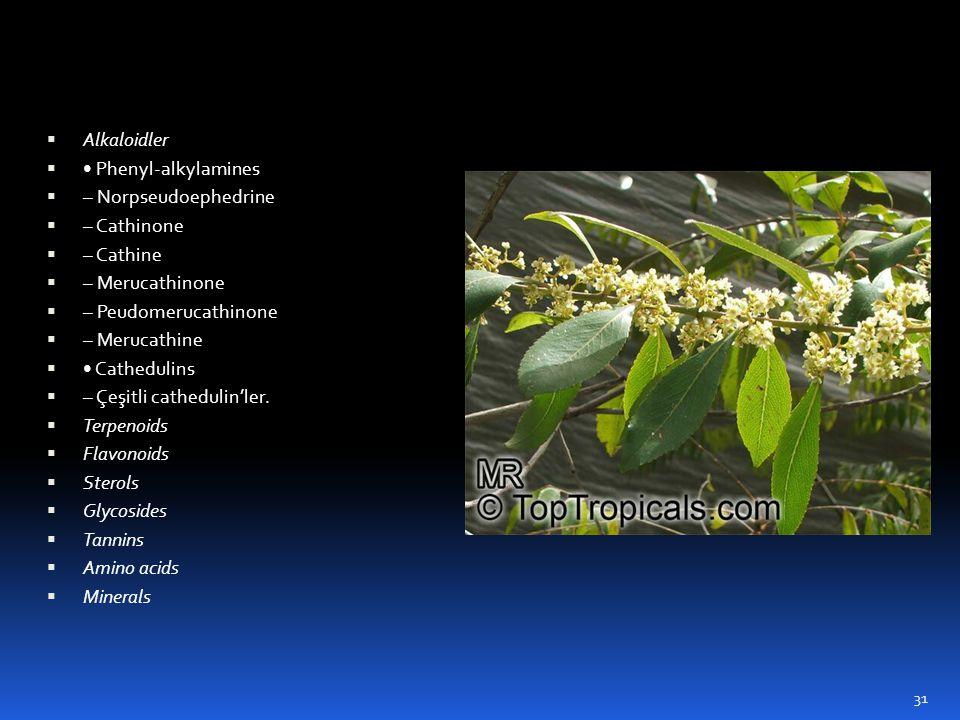  Alkaloidler  • Phenyl-alkylamines  – Norpseudoephedrine  – Cathinone  – Cathine  – Merucathinone  – Peudomerucathinone  – Merucathine  • Cat