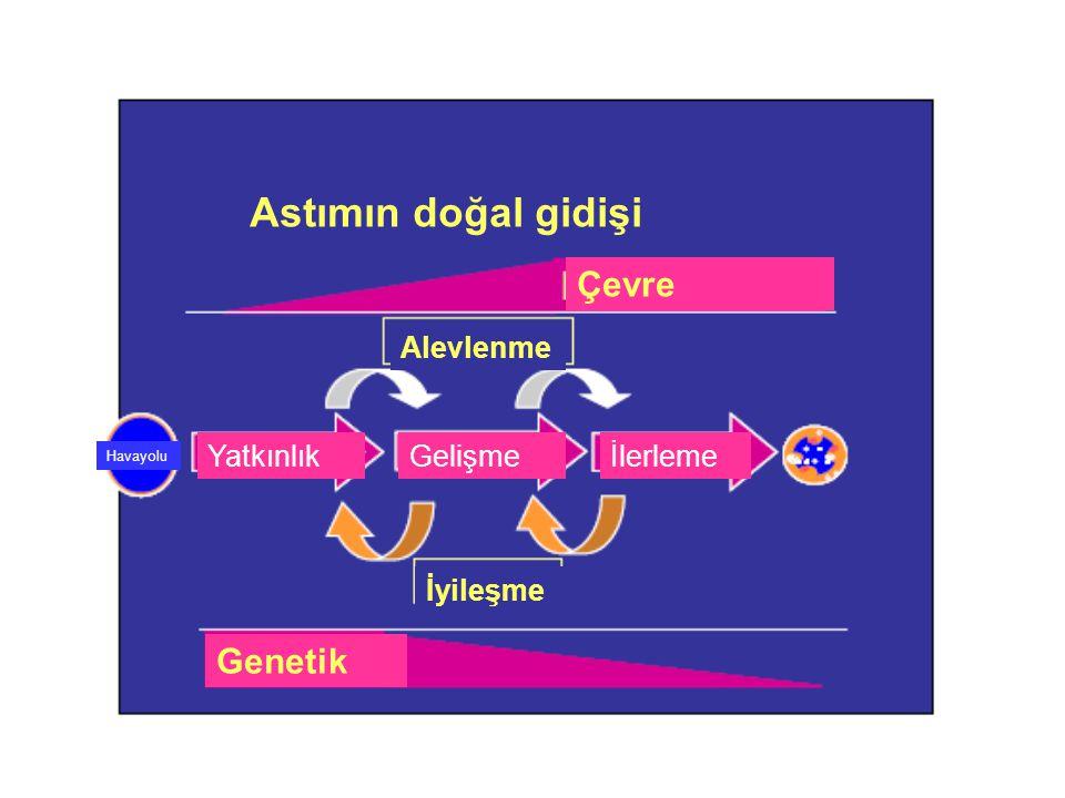 Astımın doğal gidişi İyileşme Genetik YatkınlıkGelişmeİlerleme Alevlenme Havayolu Çevre