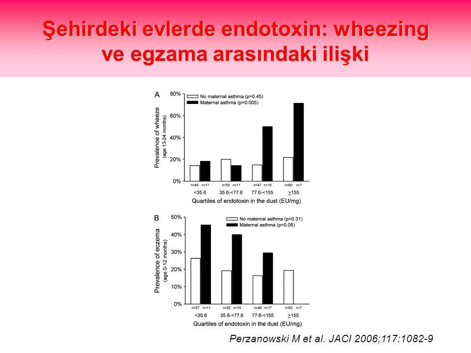 Şehirdeki evlerde endotoxin: wheezing ve egzama arasındaki ilişki Perzanowski M et al. JACI 2006;117:1082-9
