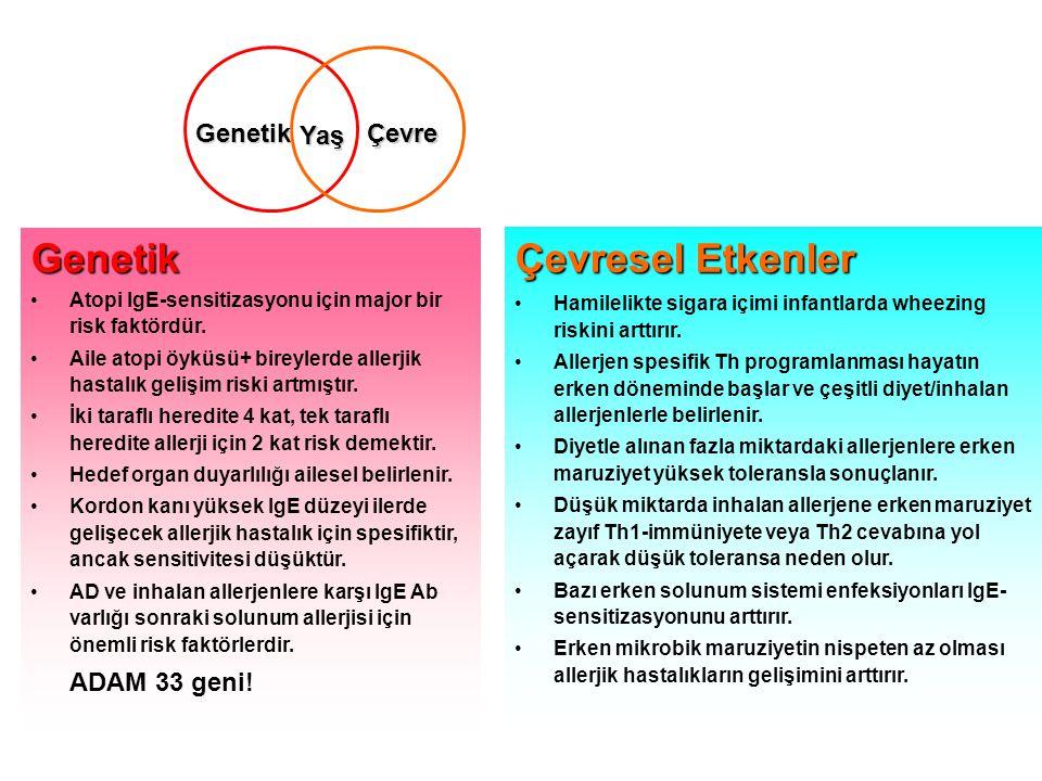 Yaş ÇevreGenetik Genetik •Atopi IgE-sensitizasyonu için major bir risk faktördür.
