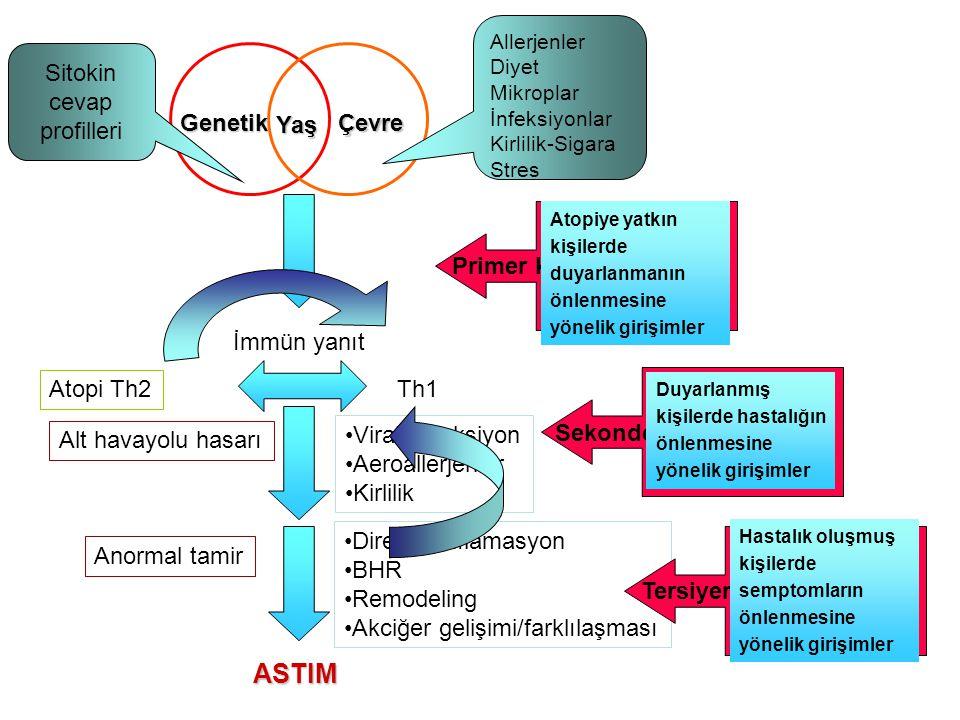 Yaş ÇevreGenetik İmmün yanıt Th1 Alt havayolu hasarı ASTIM Anormal tamir •Viral enfeksiyon •Aeroallerjenler •Kirlilik •Dirençli inflamasyon •BHR •Remo