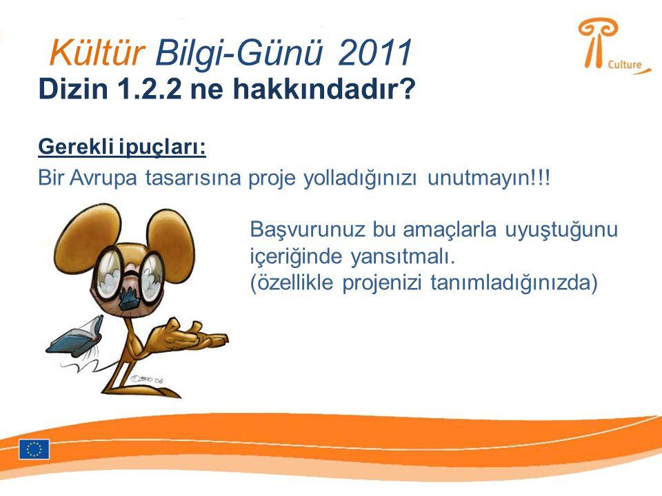 Kültür Bilgi-Günü 2011 Dizin 1.2.2 ne hakkındadır.