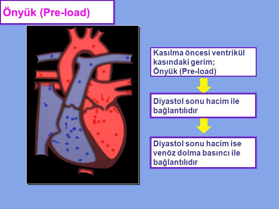 Önyük (Pre-load) Kasılma öncesi ventrikül kasındaki gerim; Önyük (Pre-load) Diyastol sonu hacim ile bağlantılıdır Diyastol sonu hacim ise venöz dolma