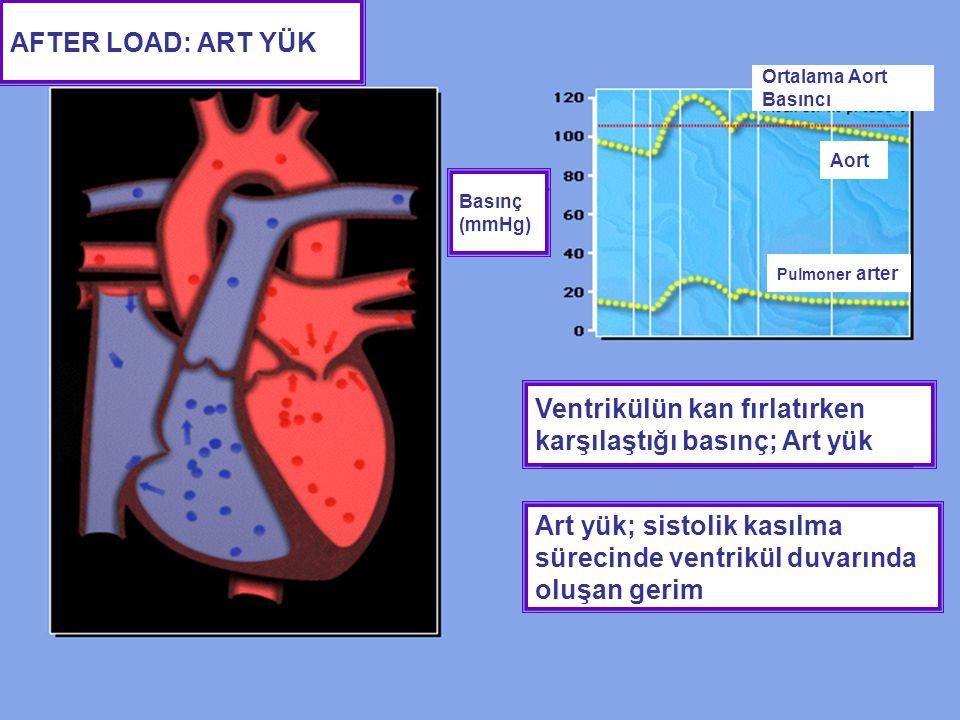 AFTER LOAD: ART YÜK Ventrikülün kan fırlatırken karşılaştığı basınç; Art yük Art yük; sistolik kasılma sürecinde ventrikül duvarında oluşan gerim Orta