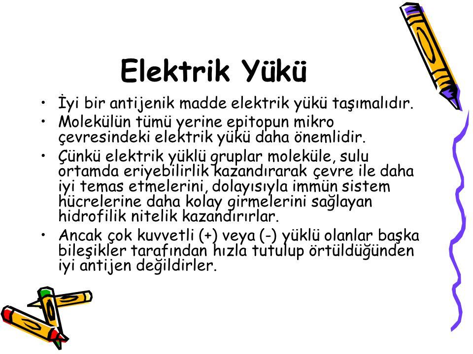 Elektrik Yükü •İyi bir antijenik madde elektrik yükü taşımalıdır. •Molekülün tümü yerine epitopun mikro çevresindeki elektrik yükü daha önemlidir. •Çü