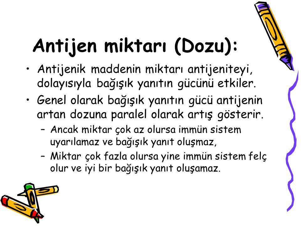 Antijen miktarı (Dozu): •Antijenik maddenin miktarı antijeniteyi, dolayısıyla bağışık yanıtın gücünü etkiler. •Genel olarak bağışık yanıtın gücü antij