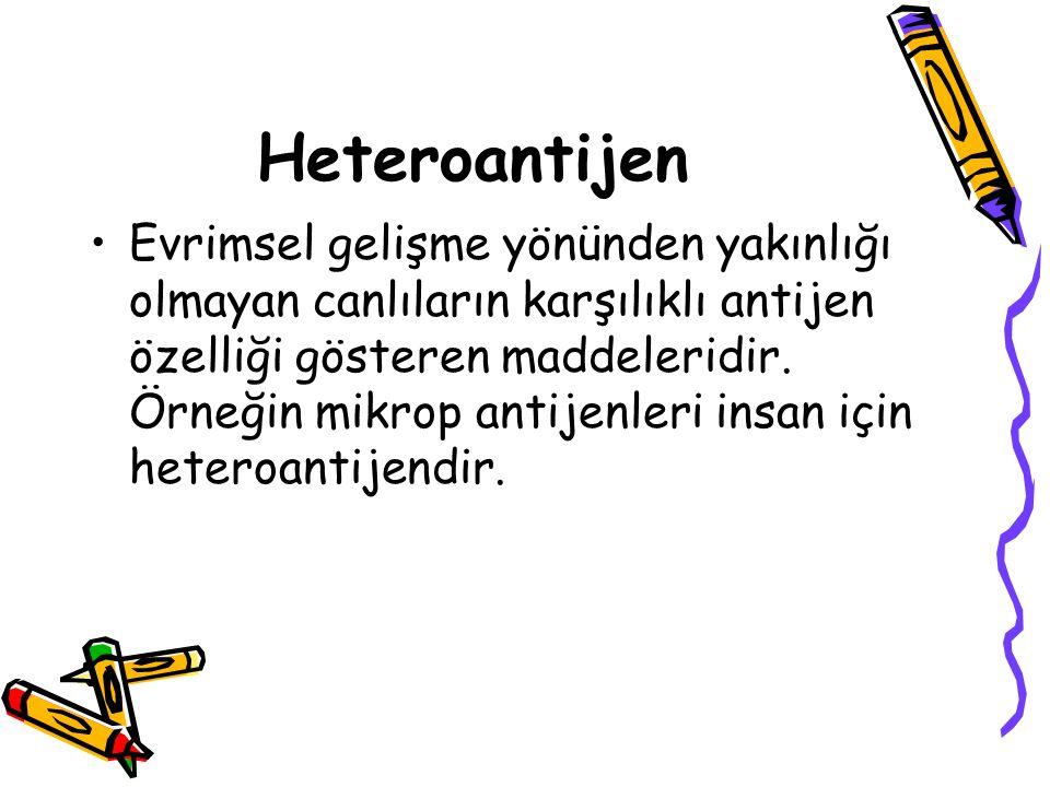 Heteroantijen •Evrimsel gelişme yönünden yakınlığı olmayan canlıların karşılıklı antijen özelliği gösteren maddeleridir. Örneğin mikrop antijenleri in