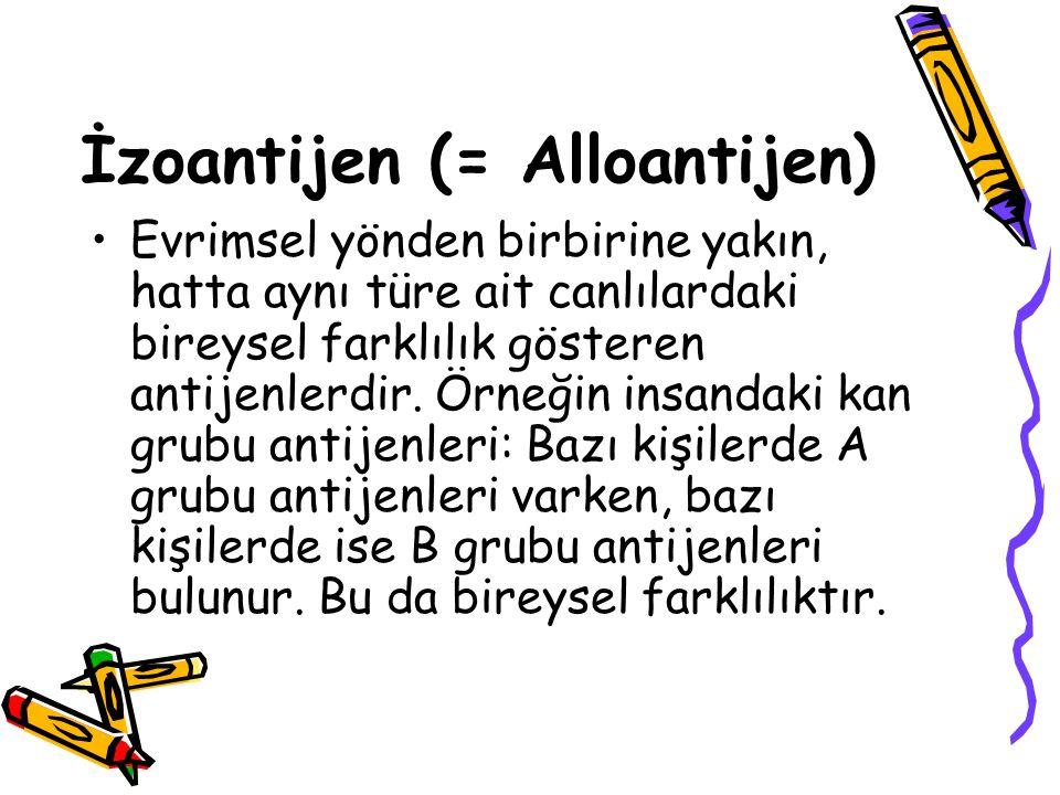 İzoantijen (= Alloantijen) •Evrimsel yönden birbirine yakın, hatta aynı türe ait canlılardaki bireysel farklılık gösteren antijenlerdir. Örneğin insan