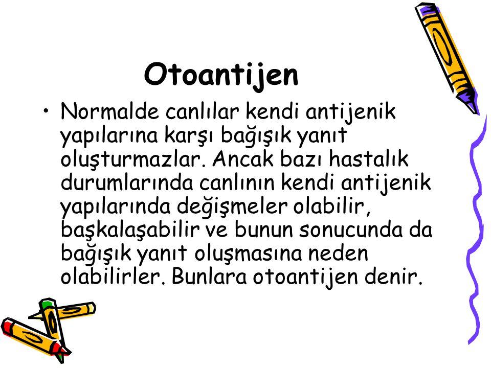 Otoantijen •Normalde canlılar kendi antijenik yapılarına karşı bağışık yanıt oluşturmazlar. Ancak bazı hastalık durumlarında canlının kendi antijenik