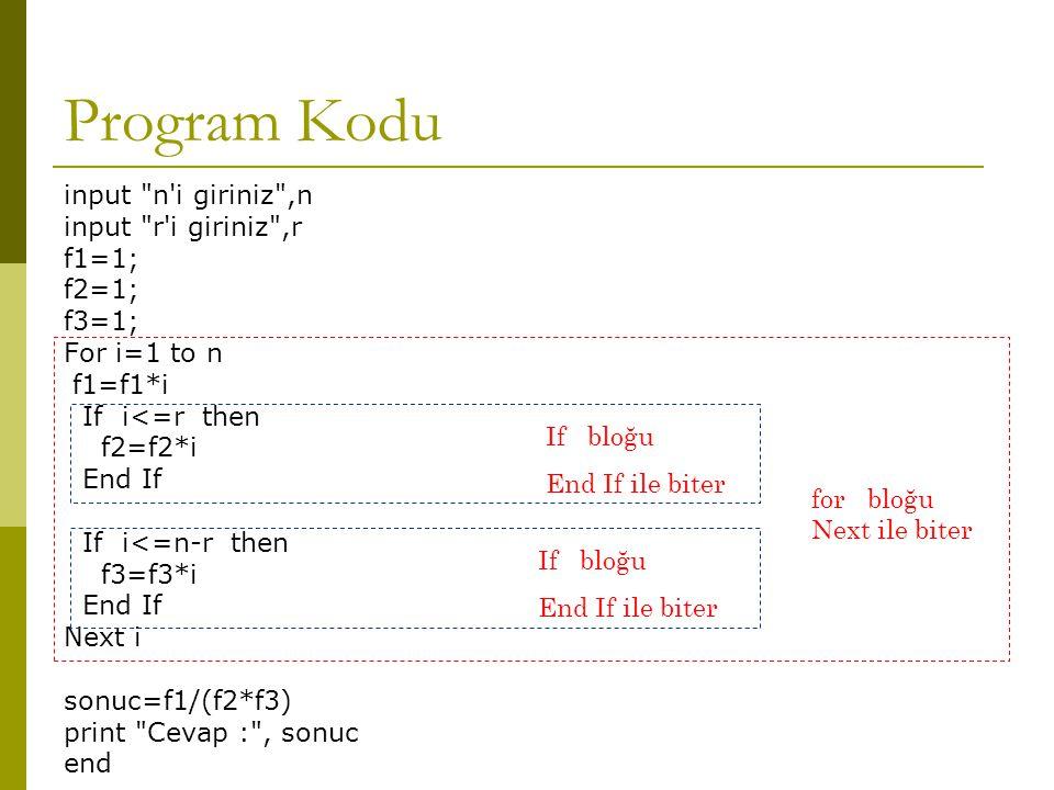 Program Kodu input