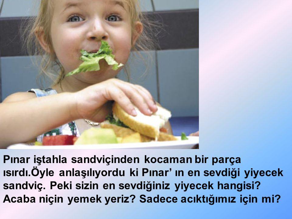 Pınar iştahla sandviçinden kocaman bir parça ısırdı.Öyle anlaşılıyordu ki Pınar' ın en sevdiği yiyecek sandviç. Peki sizin en sevdiğiniz yiyecek hangi