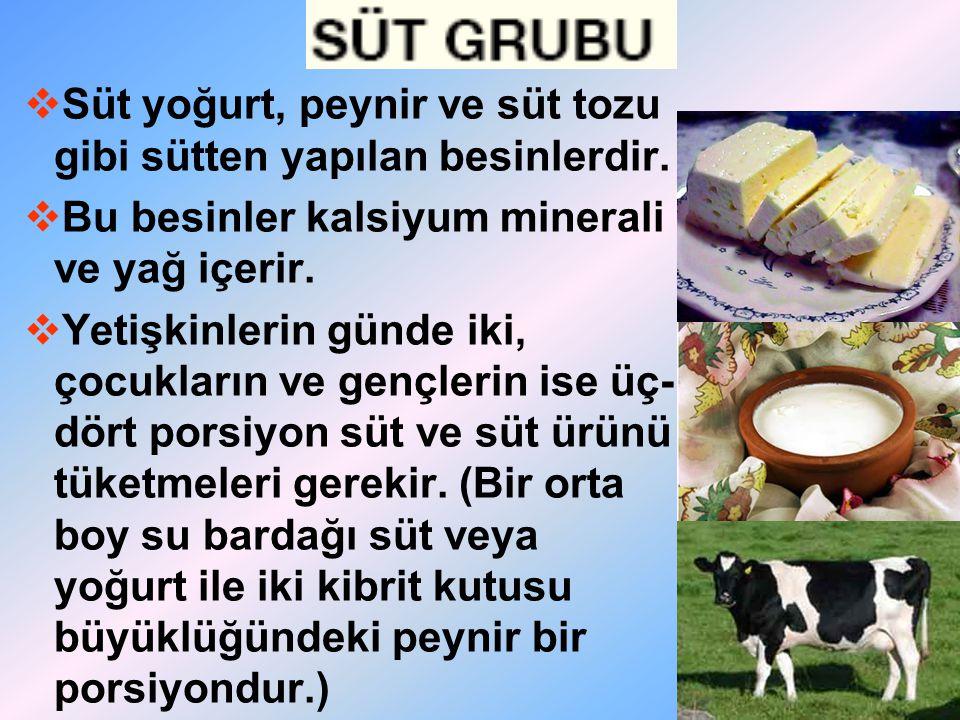  Süt yoğurt, peynir ve süt tozu gibi sütten yapılan besinlerdir.  Bu besinler kalsiyum minerali ve yağ içerir.  Yetişkinlerin günde iki, çocukların