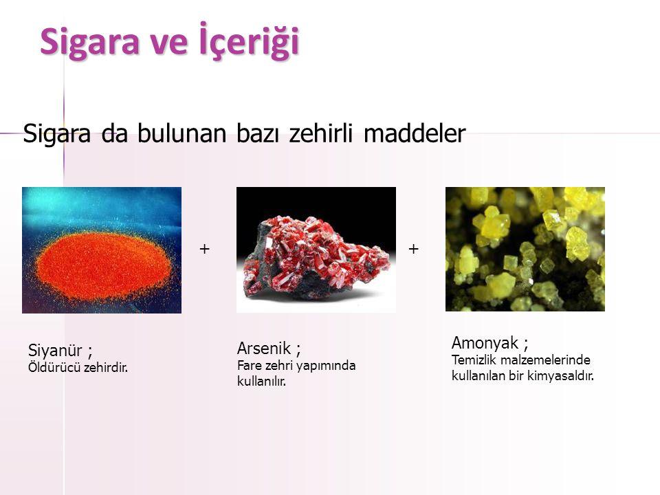 Sigara ve İçeriği Amonyak ; Temizlik malzemelerinde kullanılan bir kimyasaldır.