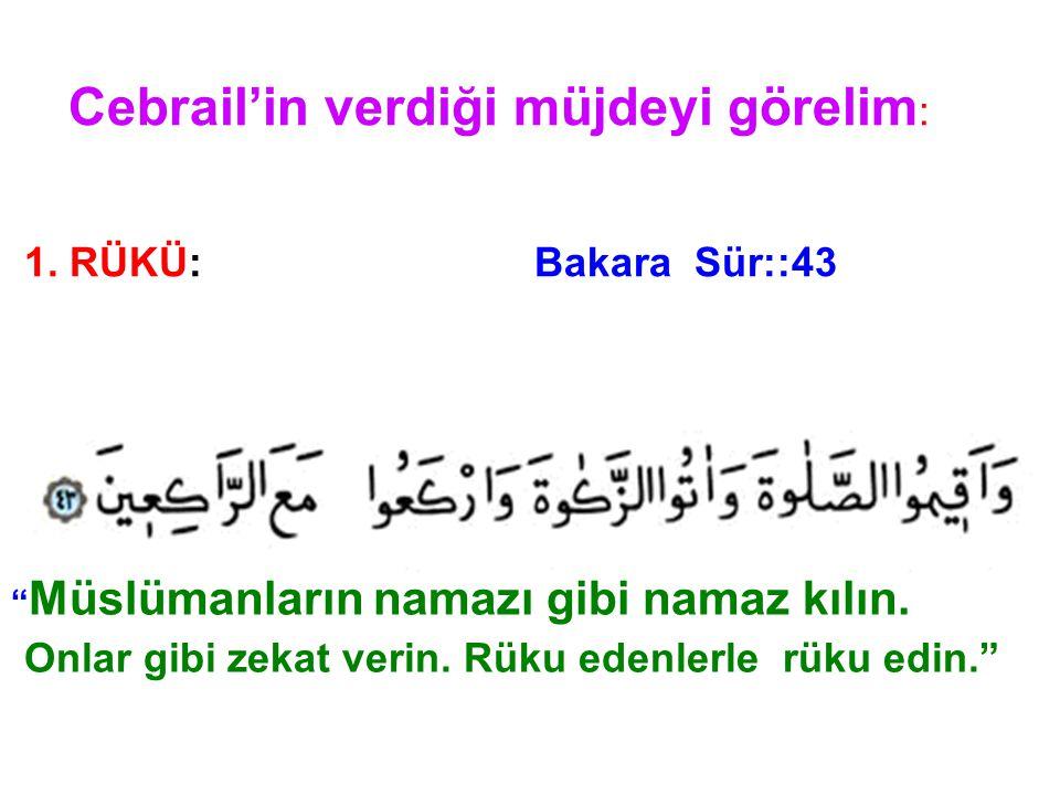 """Cebrail'in verdiği müjdeyi görelim : 1. RÜKÜ: Bakara Sür::43 """" Müslümanların namazı gibi namaz kılın. Onlar gibi zekat verin. Rüku edenlerle rüku edin"""