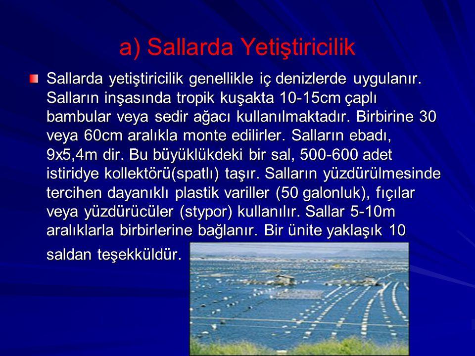 a) Sallarda Yetiştiricilik Sallarda yetiştiricilik genellikle iç denizlerde uygulanır. Salların inşasında tropik kuşakta 10-15cm çaplı bambular veya s