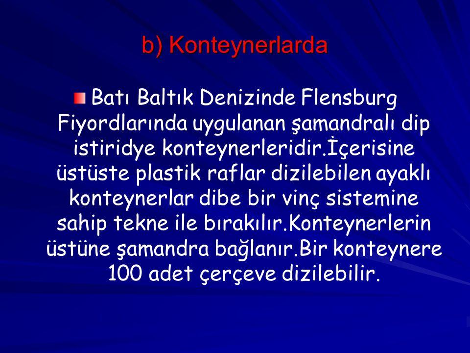b) Konteynerlarda Batı Baltık Denizinde Flensburg Fiyordlarında uygulanan şamandralı dip istiridye konteynerleridir.İçerisine üstüste plastik raflar d
