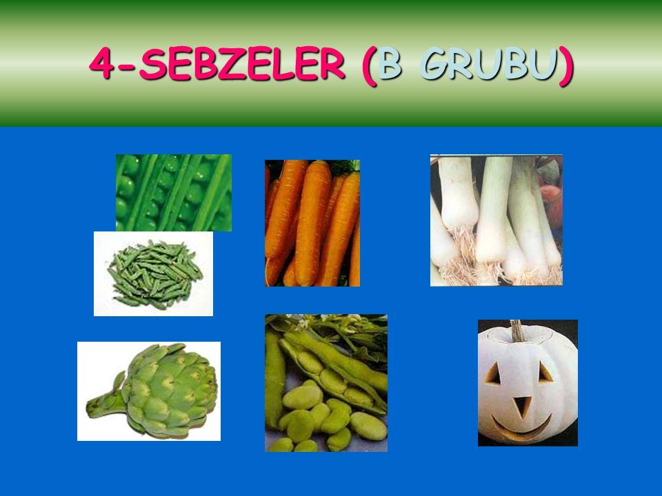 4-SEBZELER (B GRUBU)