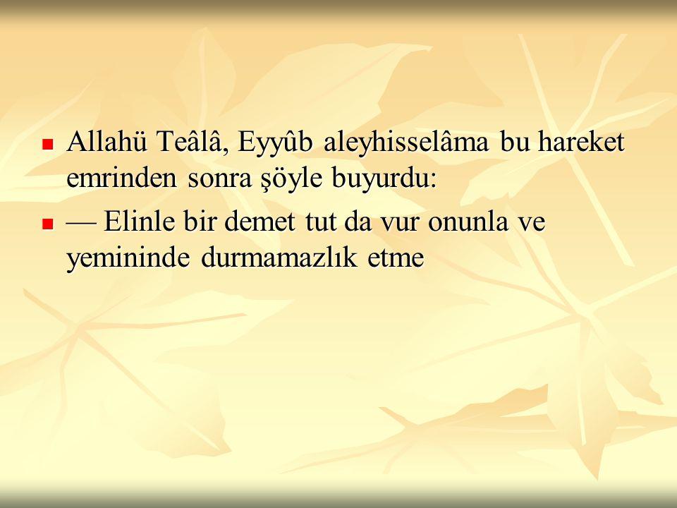  Allahü Teâlâ, Eyyûb aleyhisselâma bu hareket emrinden sonra şöyle buyurdu:  — Elinle bir demet tut da vur onunla ve yemininde durmamazlık etme