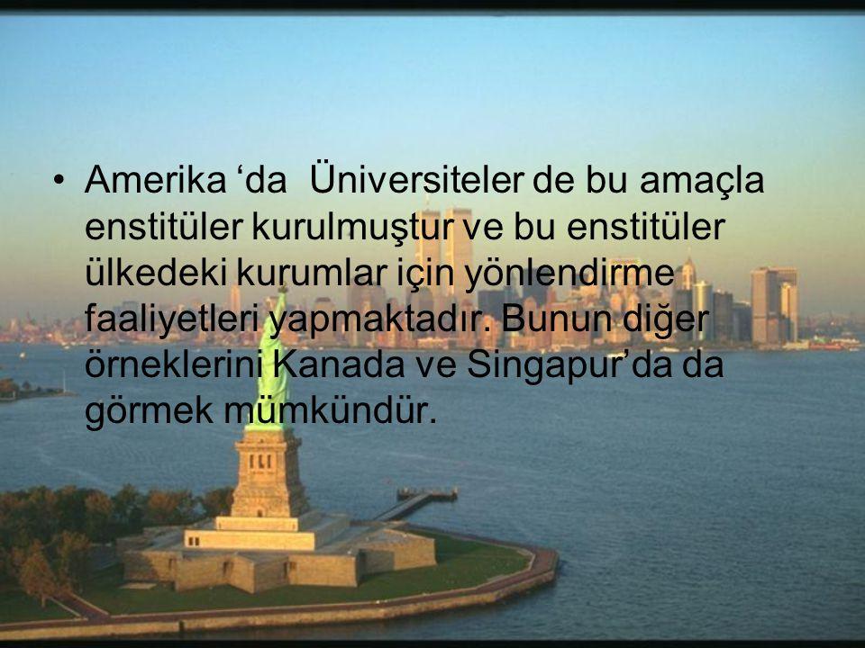 •Amerika 'da Üniversiteler de bu amaçla enstitüler kurulmuştur ve bu enstitüler ülkedeki kurumlar için yönlendirme faaliyetleri yapmaktadır. Bunun diğ