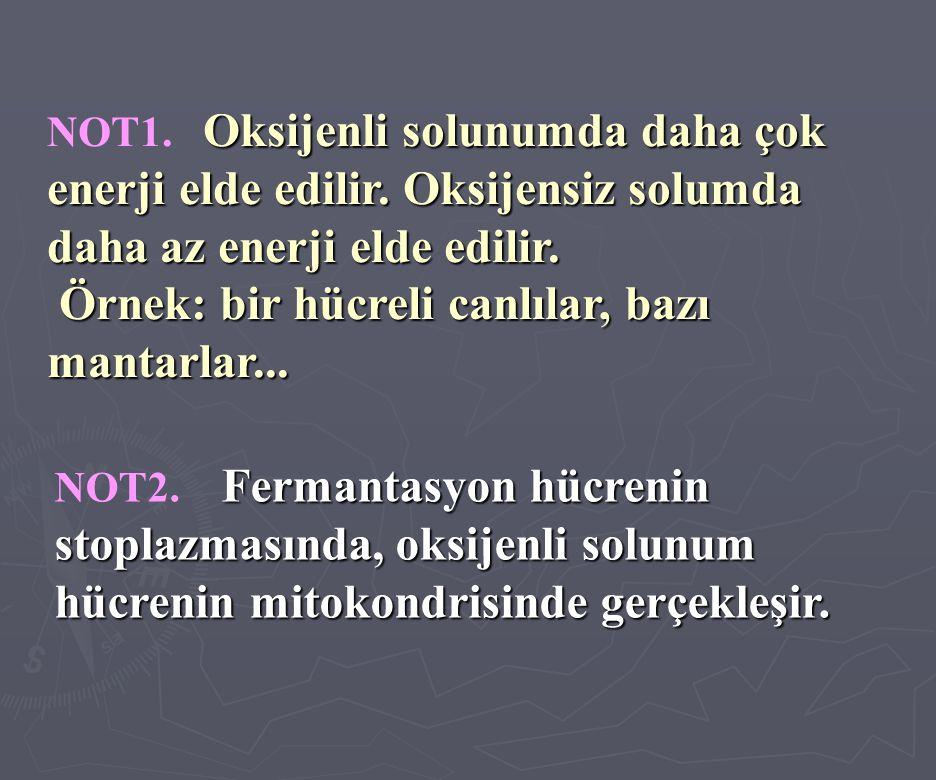 Oksijenli solunumda daha çok enerji elde edilir.Oksijensiz solumda daha az enerji elde edilir.