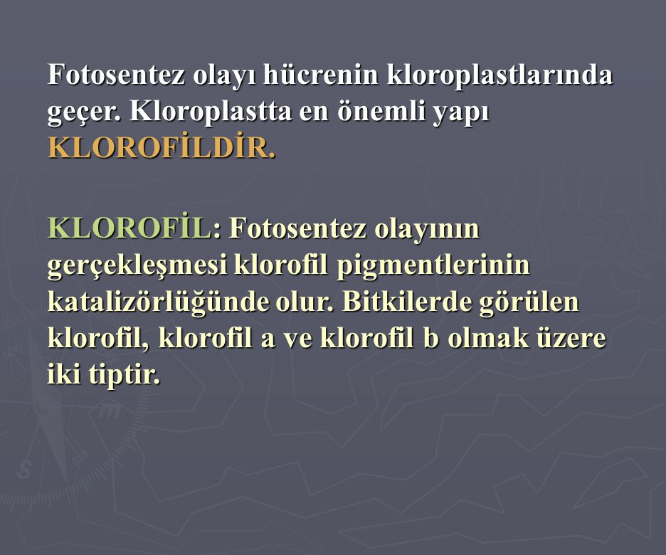 Fotosentez olayı hücrenin kloroplastlarında geçer. Kloroplastta en önemli yapı KLOROFİLDİR. KLOROFİL: Fotosentez olayının gerçekleşmesi klorofil pigme
