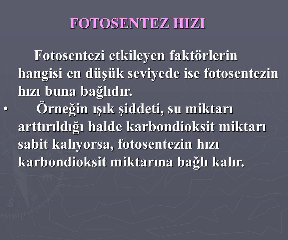 FOTOSENTEZ HIZI Fotosentezi etkileyen faktörlerin hangisi en düşük seviyede ise fotosentezin hızı buna bağlıdır. • Örneğin ışık şiddeti, su miktarı ar
