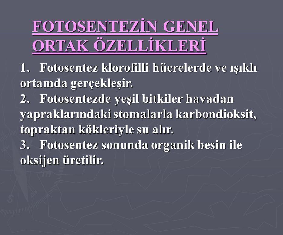 FOTOSENTEZİN GENEL ORTAK ÖZELLİKLERİ 1.