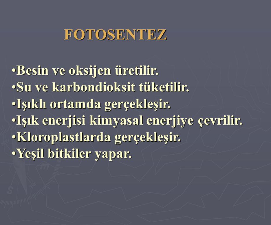 FOTOSENTEZ FOTOSENTEZ •Besin ve oksijen üretilir.•Su ve karbondioksit tüketilir.