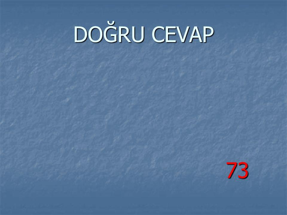 DOĞRU CEVAP 73 73