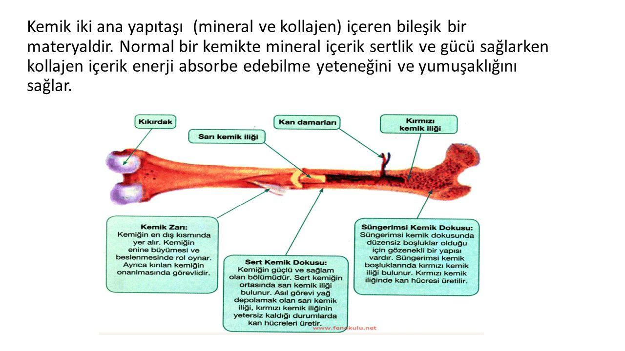 Kemik iki ana yapıtaşı (mineral ve kollajen) içeren bileşik bir materyaldir. Normal bir kemikte mineral içerik sertlik ve gücü sağlarken kollajen içer