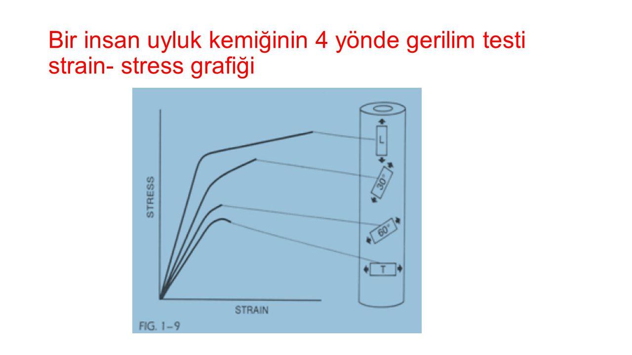 Bir insan uyluk kemiğinin 4 yönde gerilim testi strain- stress grafiği