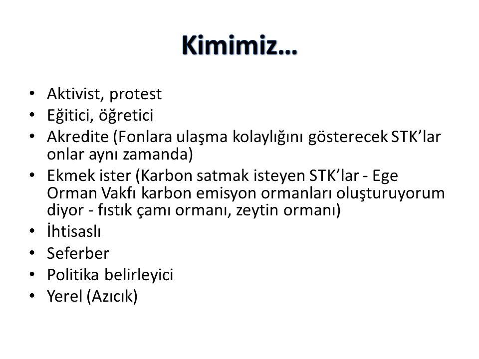 • Aktivist, protest • Eğitici, öğretici • Akredite (Fonlara ulaşma kolaylığını gösterecek STK'lar onlar aynı zamanda) • Ekmek ister (Karbon satmak ist