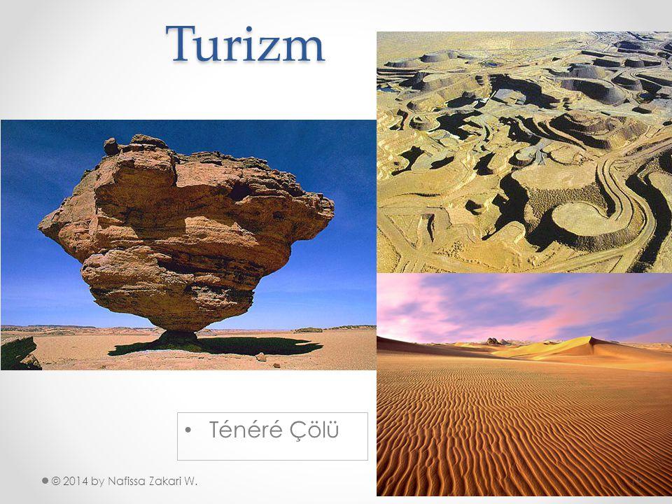 Turizm © 2014 by Nafissa Zakari W. •T•Ténéré Çölü 19
