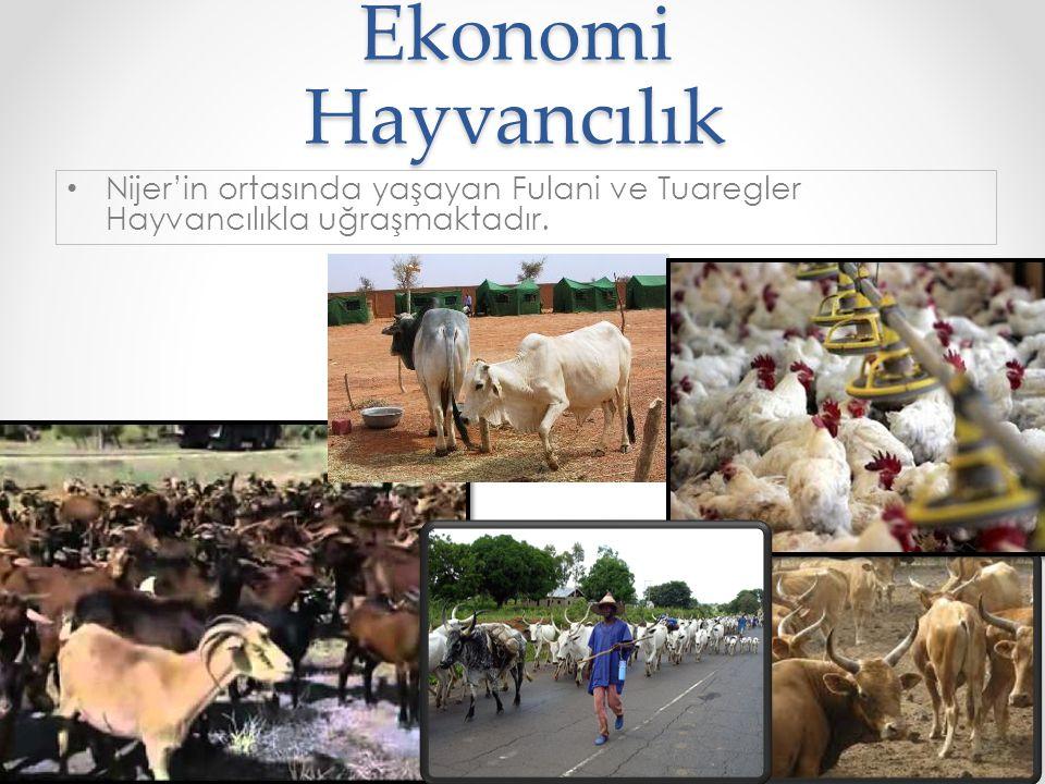 Ekonomi Hayvancılık © 2014 by Nafissa Zakari W. •N•Nijer'in ortasında yaşayan Fulani ve Tuaregler Hayvancılıkla uğraşmaktadır. 20