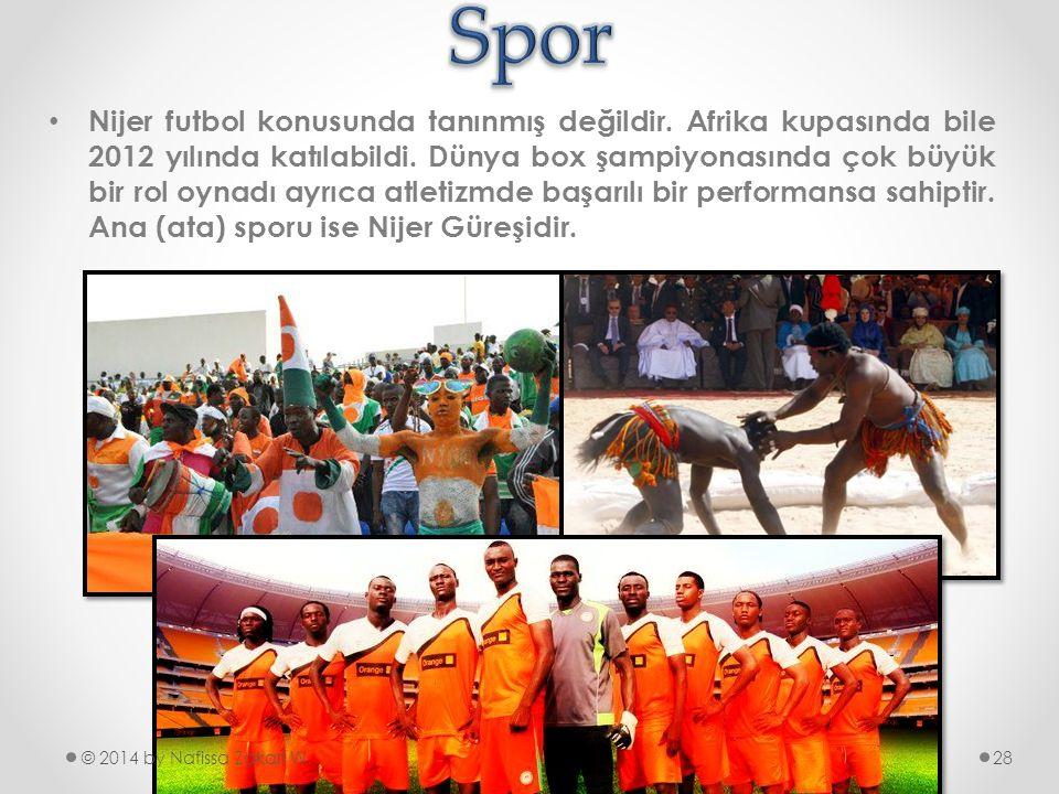 •N•Nijer futbol konusunda tanınmış değildir. Afrika kupasında bile 2012 yılında katılabildi. Dünya box şampiyonasında çok büyük bir rol oynadı ayrıca