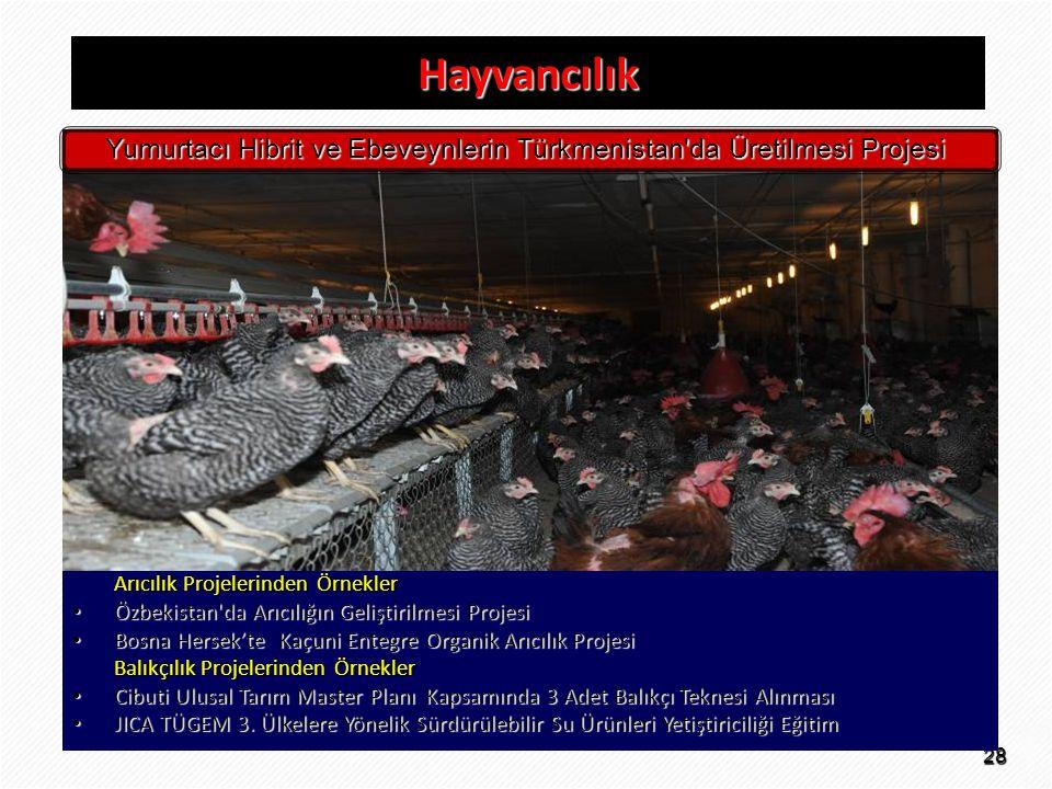 28 Hayvancılık Arıcılık Projelerinden Örnekler • Özbekistan'da Arıcılığın Geliştirilmesi Projesi • Bosna Hersek'te Kaçuni Entegre Organik Arıcılık Pro