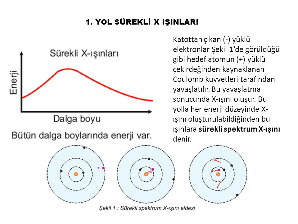 1. YOL SÜREKLİ X IŞINLARI Katottan çıkan (-) yüklü elektronlar Şekil 1'de görüldüğü gibi hedef atomun (+) yüklü çekirdeğinden kaynaklanan Coulomb kuvv