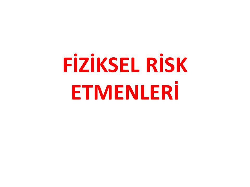FİZİKSEL RİSK ETMENLERİ