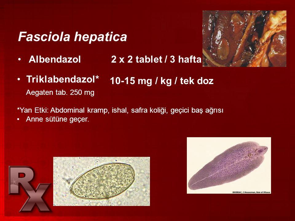 Fasciola hepatica •Albendazol 2 x 2 tablet / 3 hafta •Triklabendazol* Aegaten tab. 250 mg 10-15 mg / kg / tek doz *Yan Etki: Abdominal kramp, ishal, s