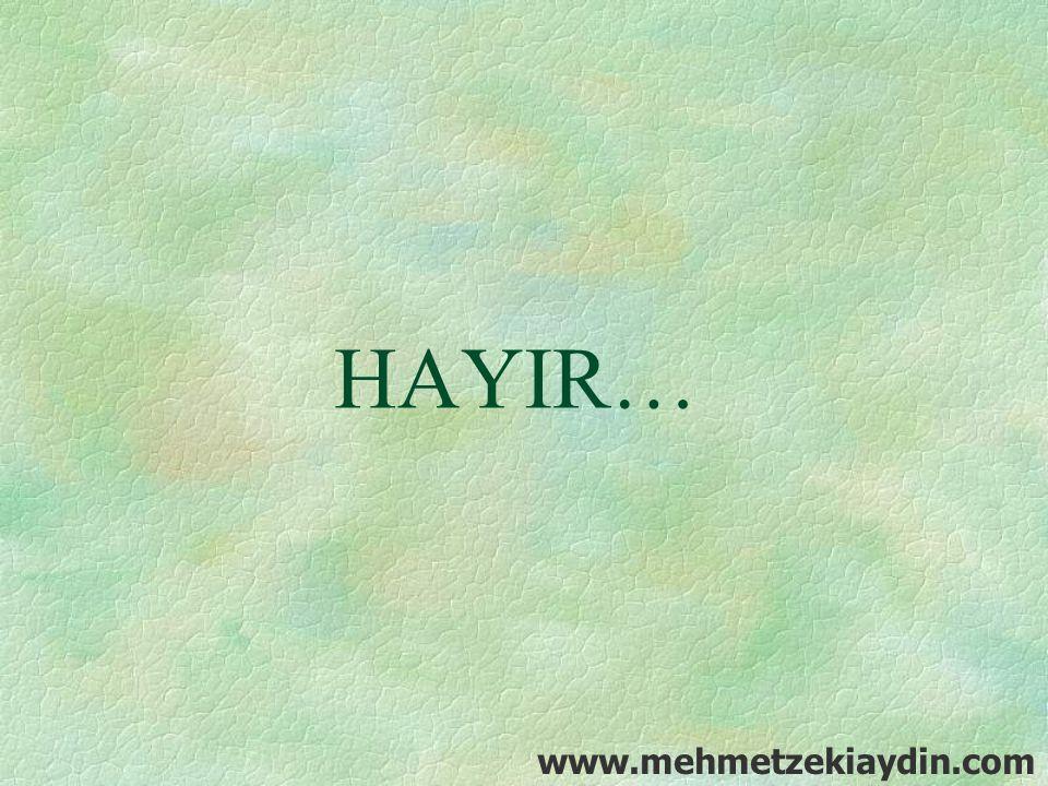 HAYIR… www.mehmetzekiaydin.com