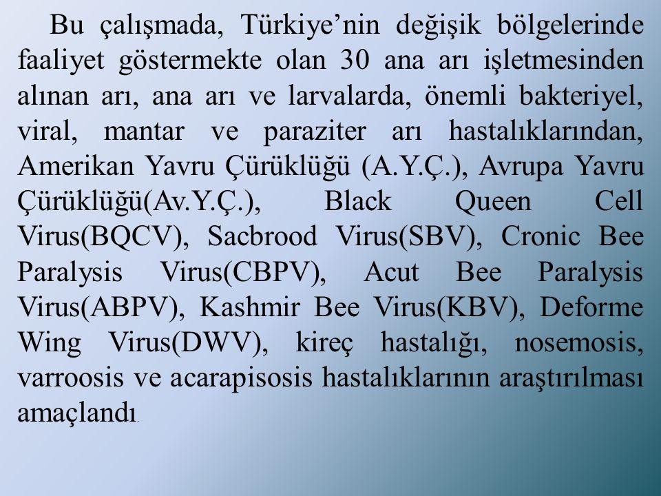 Bu çalışmada, Türkiye'nin değişik bölgelerinde faaliyet göstermekte olan 30 ana arı işletmesinden alınan arı, ana arı ve larvalarda, önemli bakteriyel